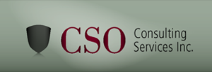 CSO Consulting Services Inc company